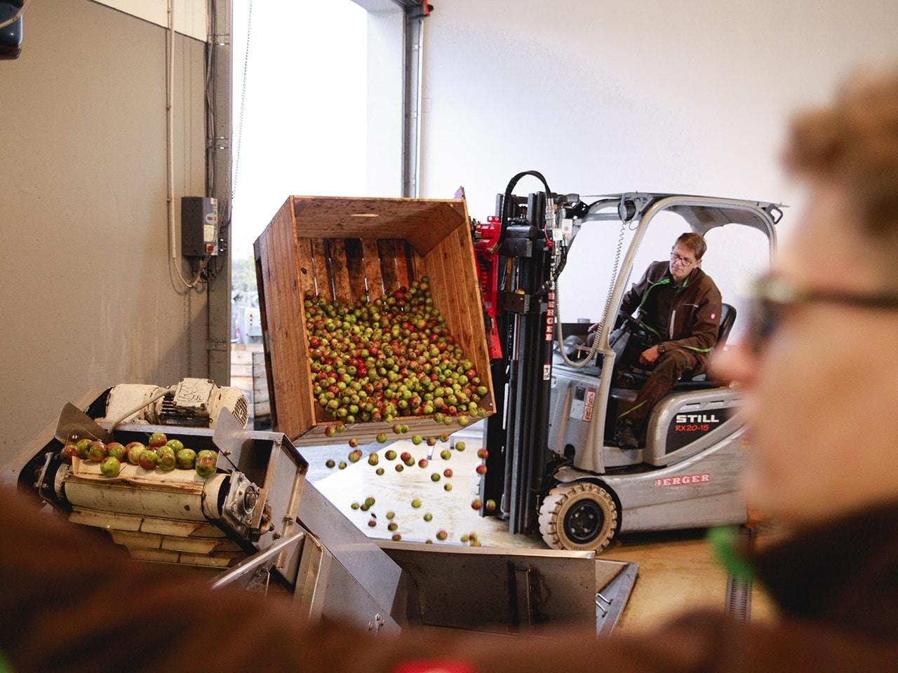 Bio Apfel pressen Direktsaft vom Pankrazhofer Tragwein